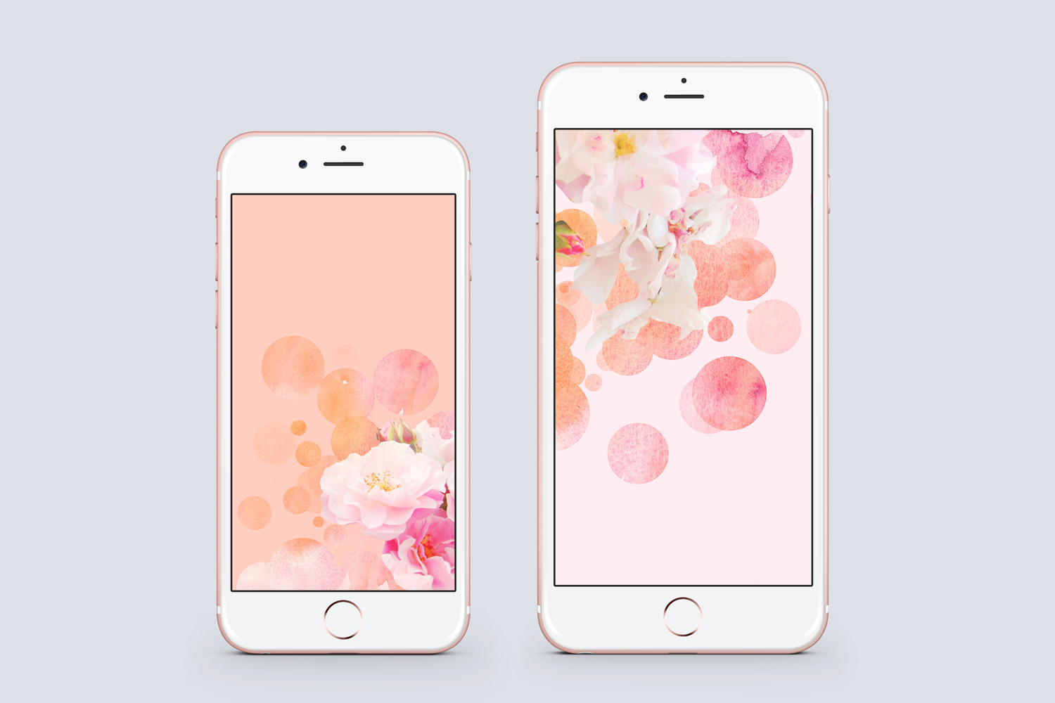 Free Rose Wallpapers For Your Phone Desktop And Tablet